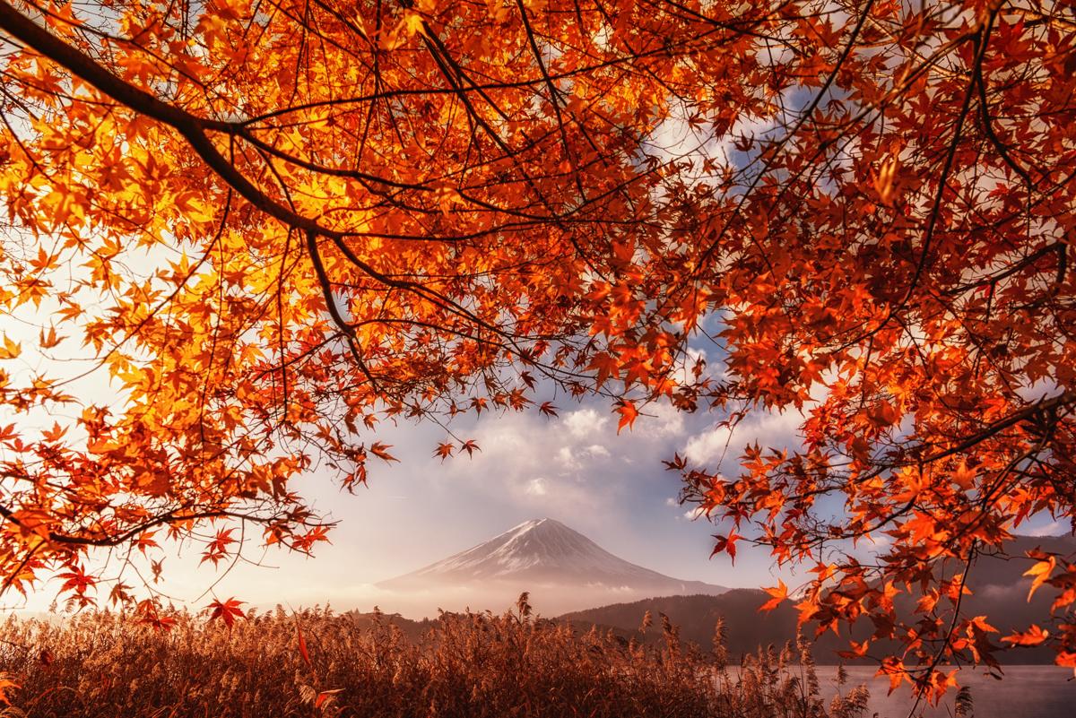 富士山フォトツアー