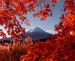 富士山撮影ツアー