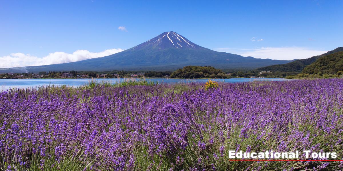 富士山自然体験・教育旅行プログラム