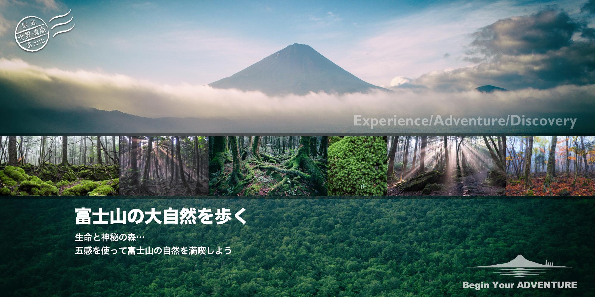 富士山の大自然を歩く