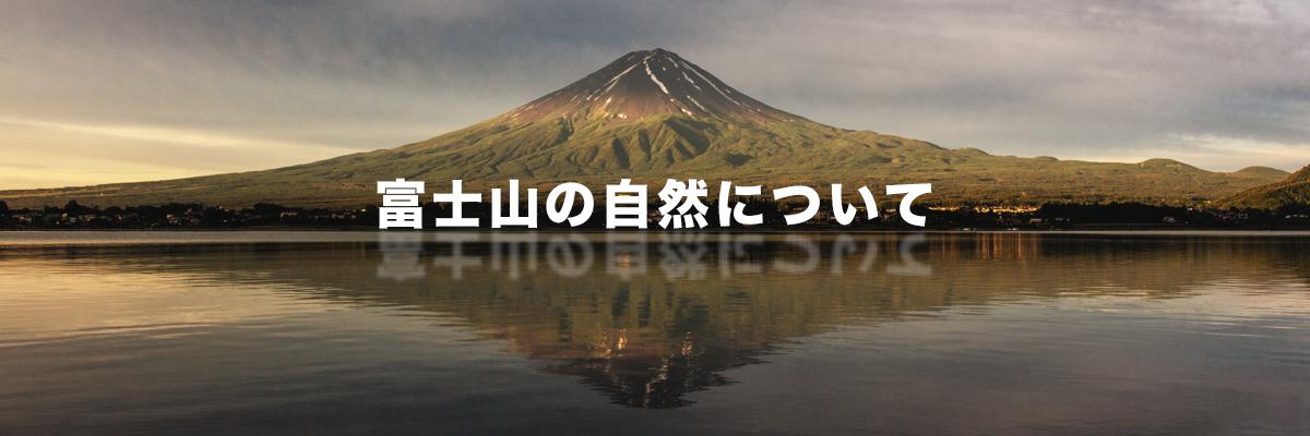 富士山の自然について